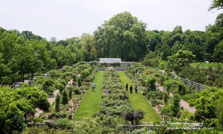 Brooklyn Museum and Garden