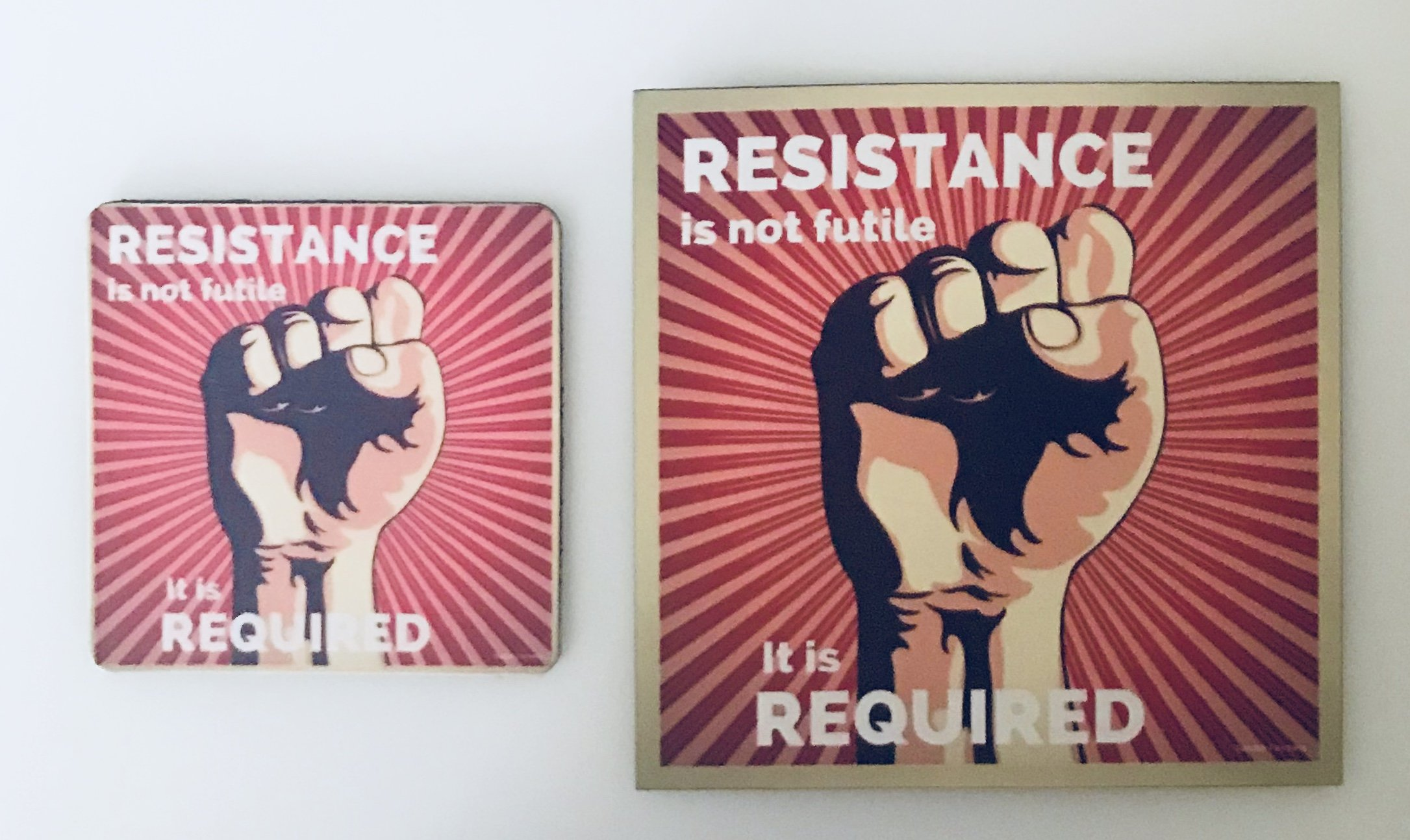 Resistance magnets Sander Feinberg